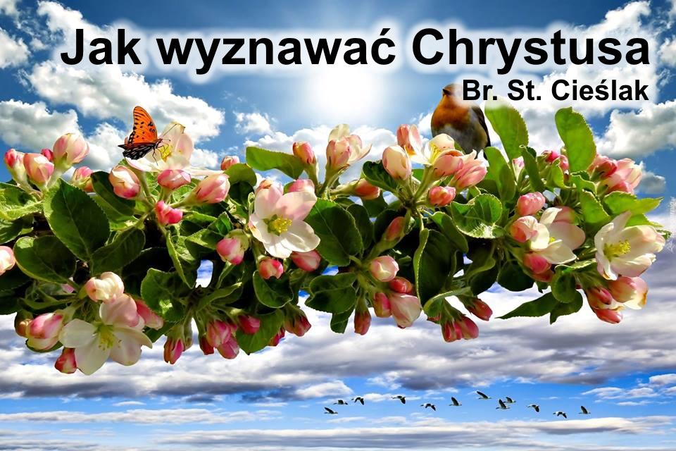 Jak wyznawać Chrystusa