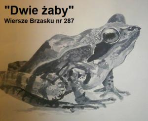 Dwie żaby