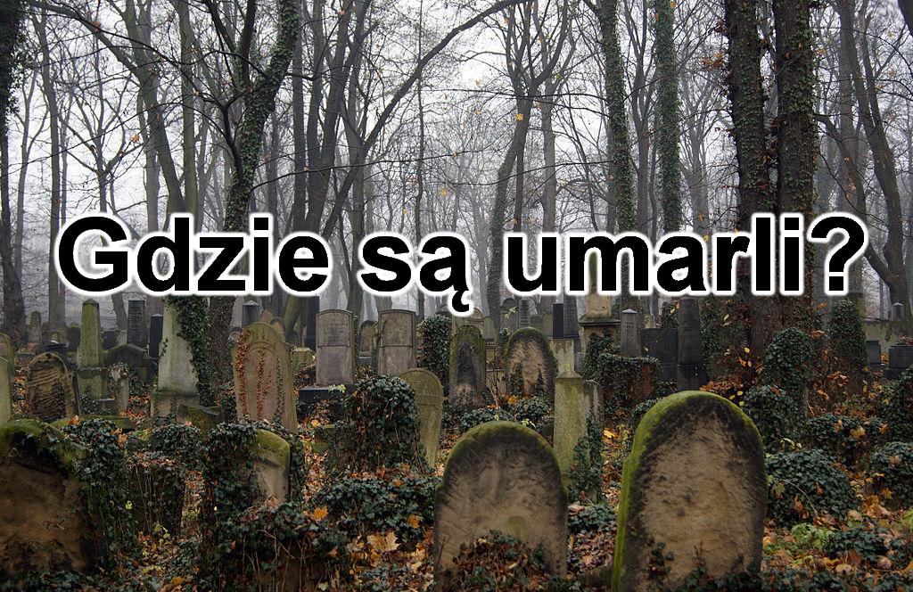 Gdzie są umarli? - spis treści